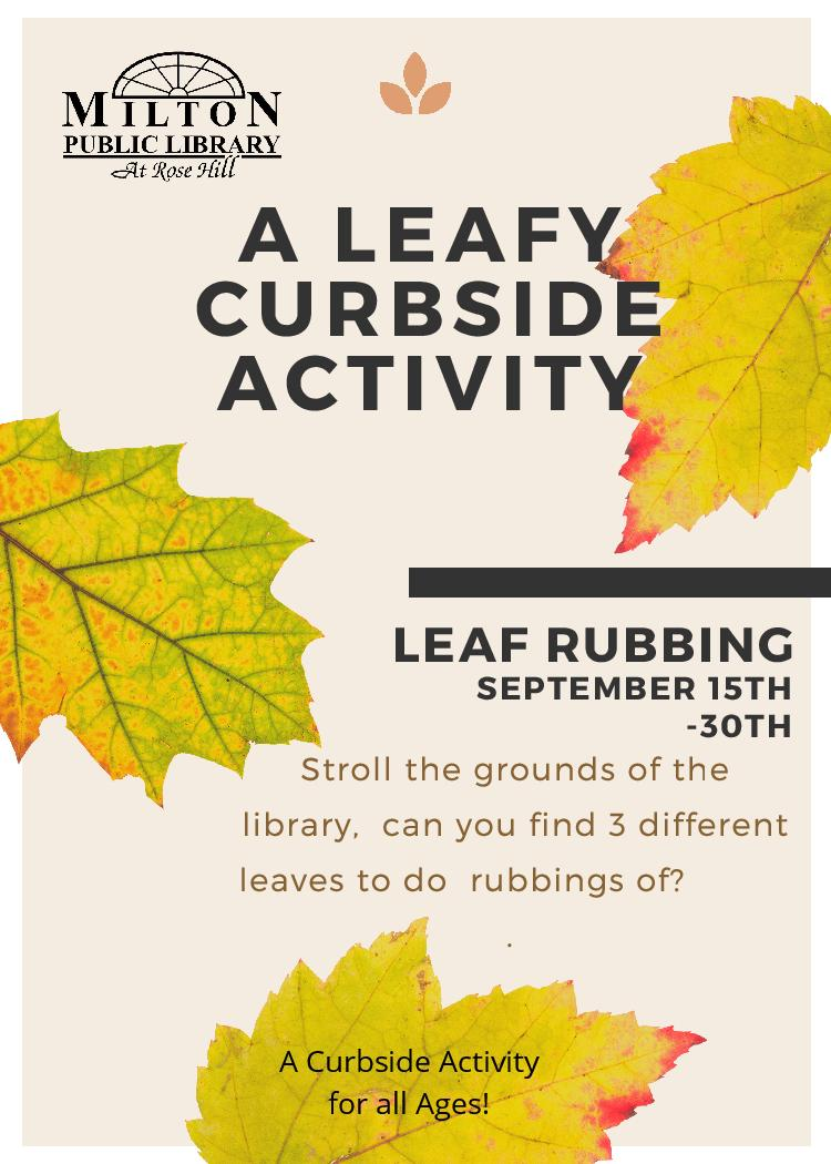 A Leafy Curbside Activity