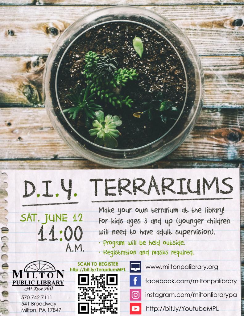D.I.Y. Terrariums
