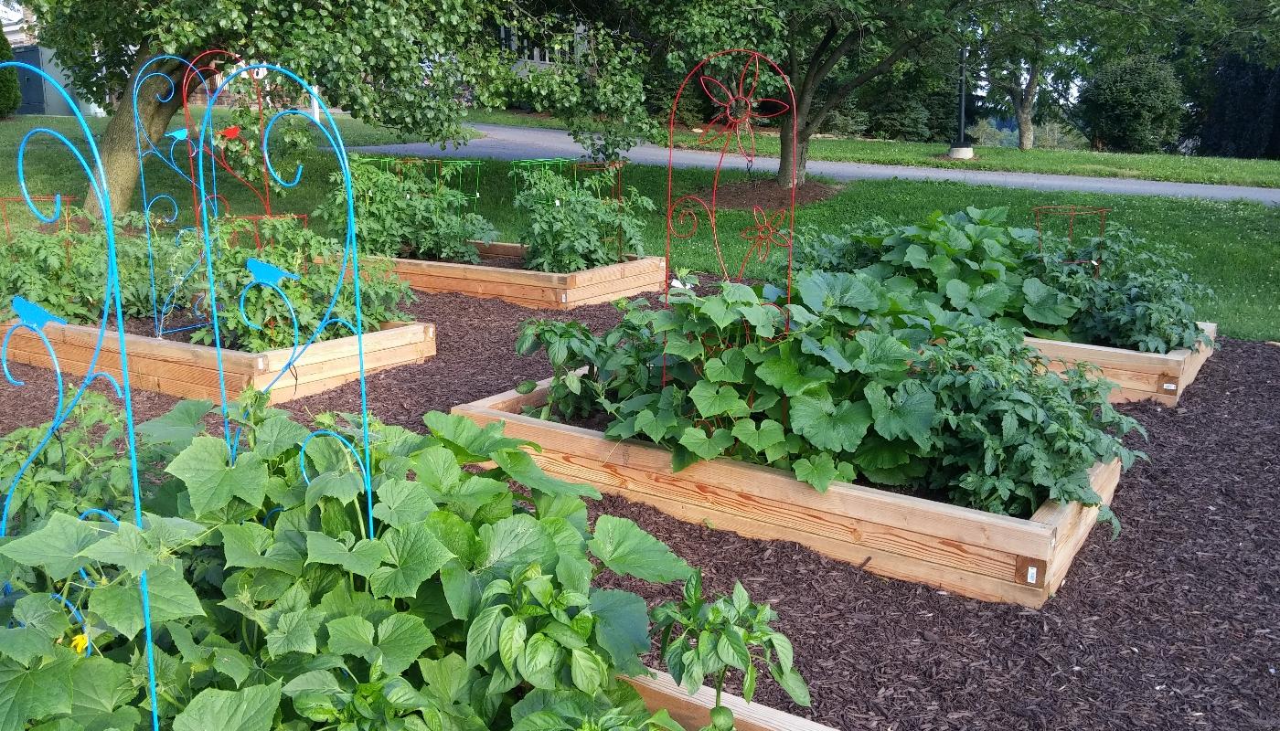 gardengallery2
