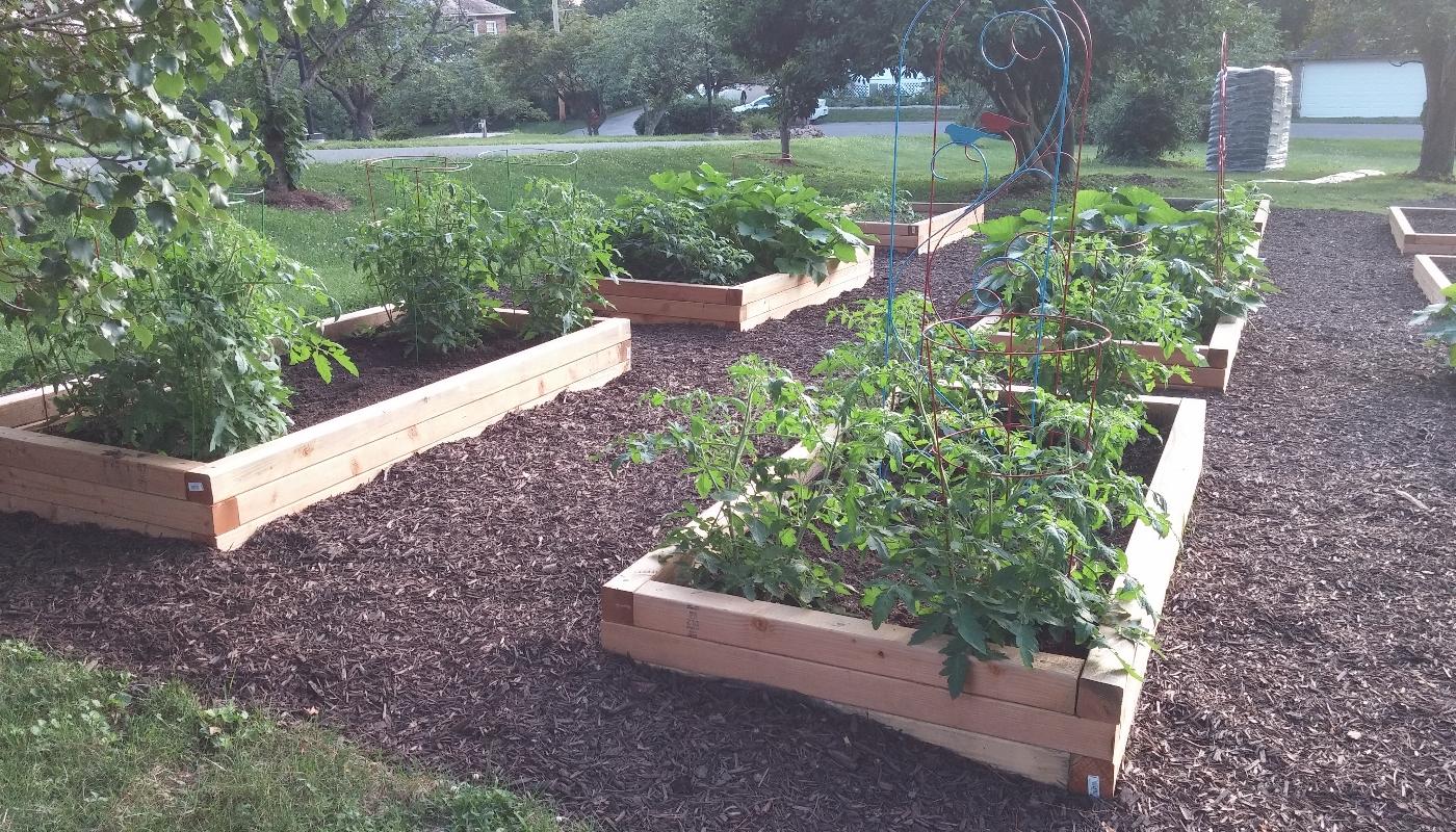 gardengallery3