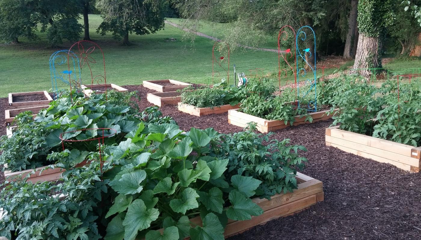 gardengallery5